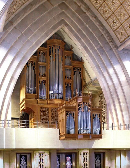new_organ